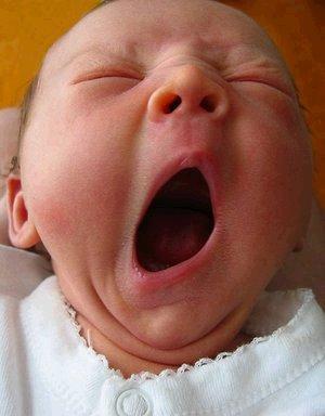 baby-yawn.jpg